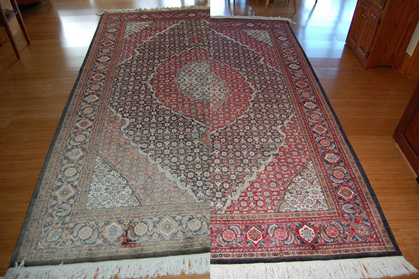 Expert Carpet Dyeing Bleach Repair And Specialized Stain Removal Services