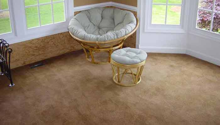 Can You Dye Carpet >> Expert Carpet Dyeing Bleach Repair And Specialized Stain